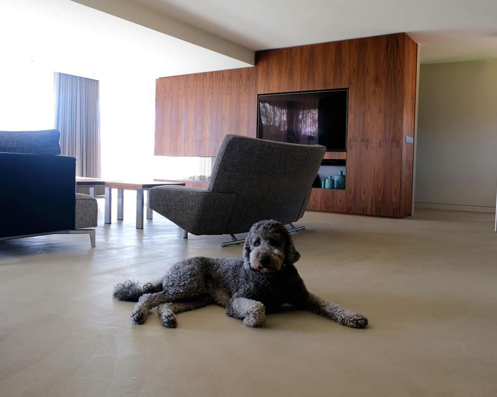 gulve eller møbler